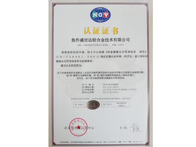 职业健康安全管理(中文)